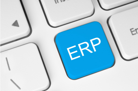 Risks associated with ERP software