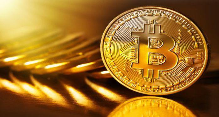Bitcoin Life