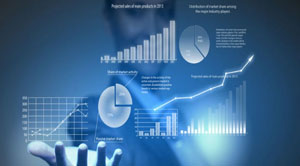 Making the most out of Customer Data Analytics
