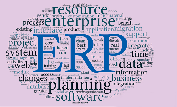 7 Ways to Increase Business Profitability with ERP Software